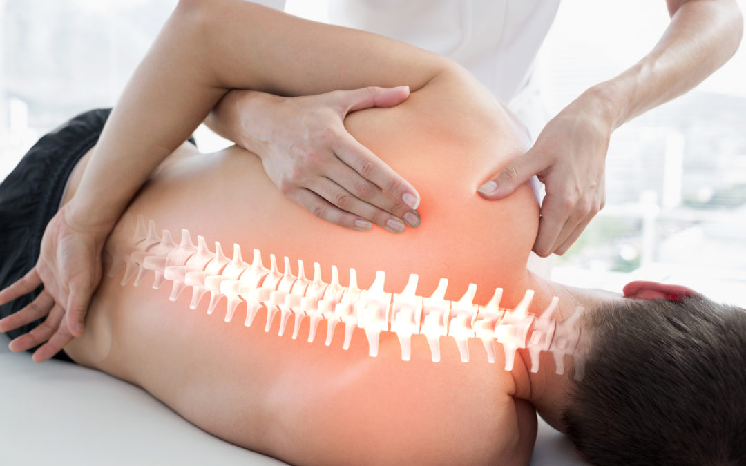 Spinal Adjustment Treatment for Lower Back Pain